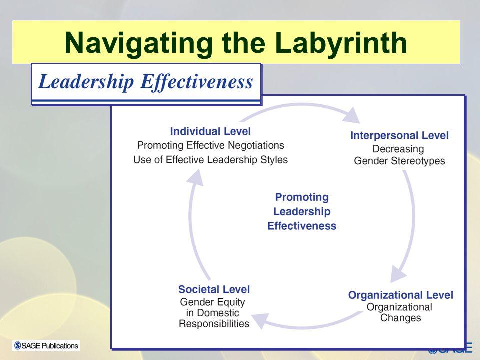 Navigating the Labyrinth