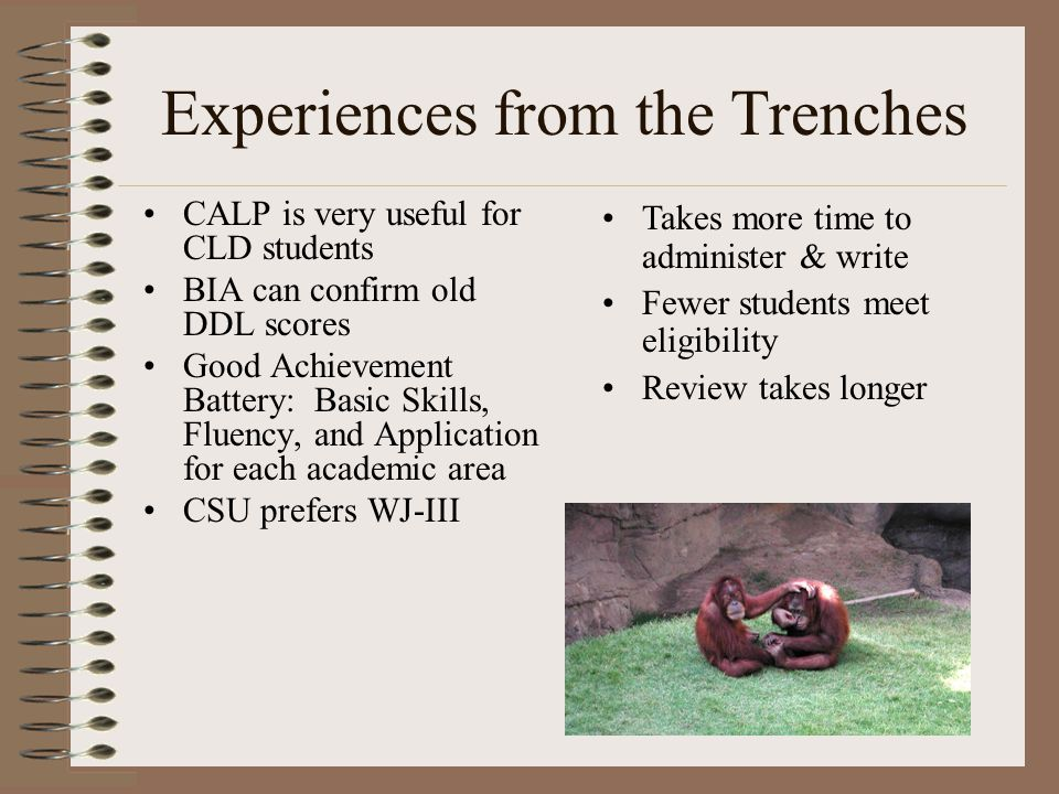 Experiences from the Trenches