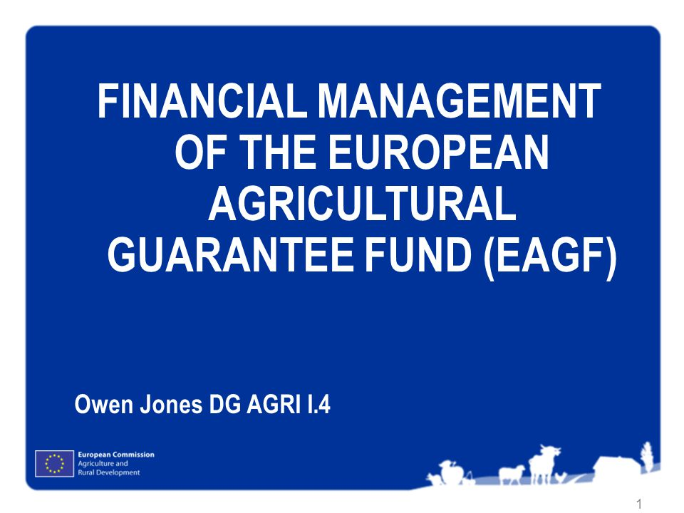 FINANCIAL MANAGEMENT OF THE EUROPEAN AGRICULTURAL GUARANTEE FUND (EAGF)