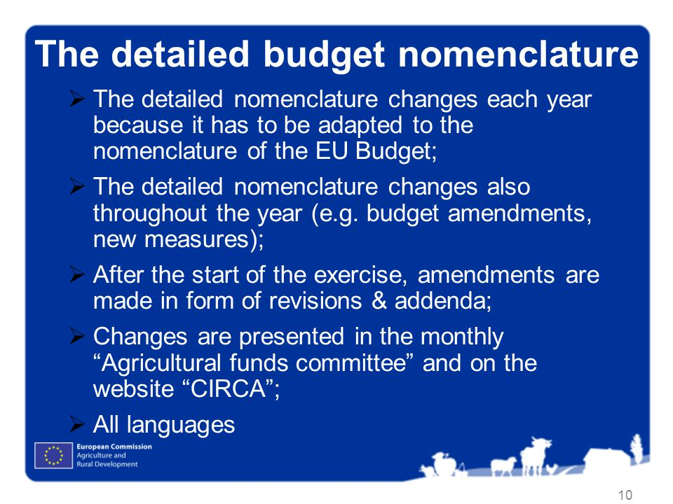 The detailed budget nomenclature