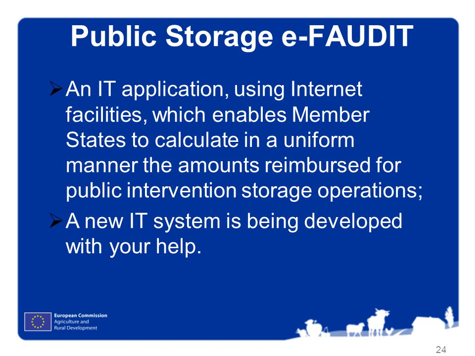 Public Storage e-FAUDIT