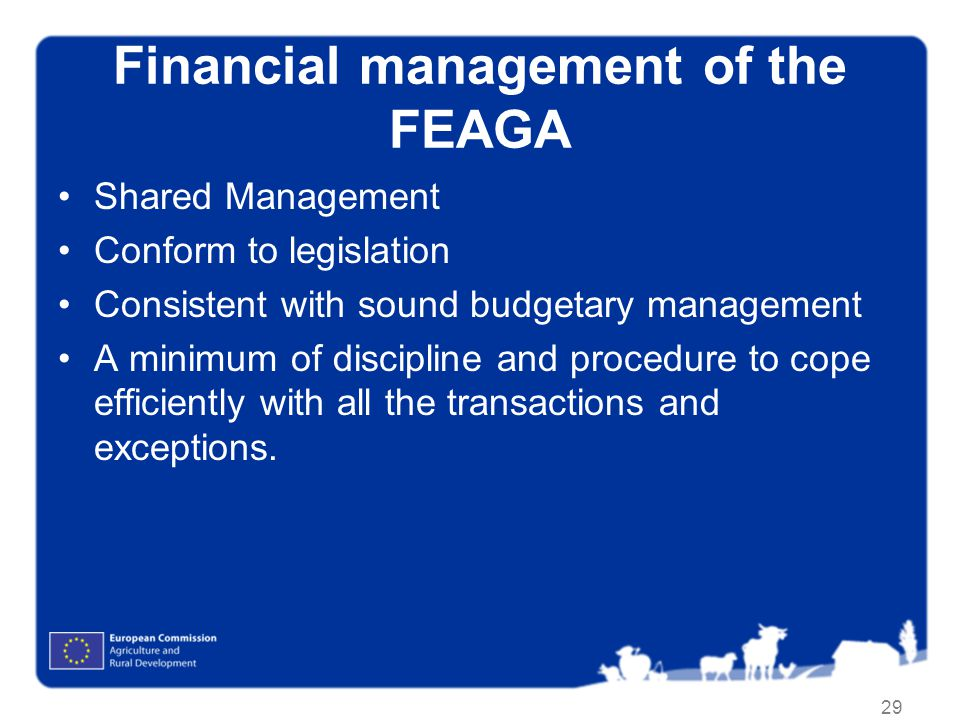 Financial management of the FEAGA
