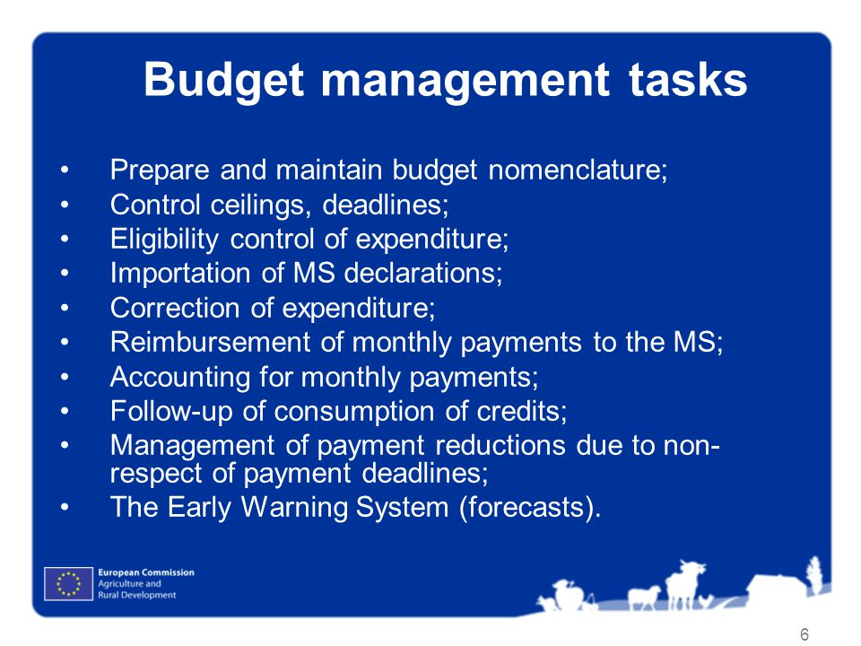 Budget management tasks