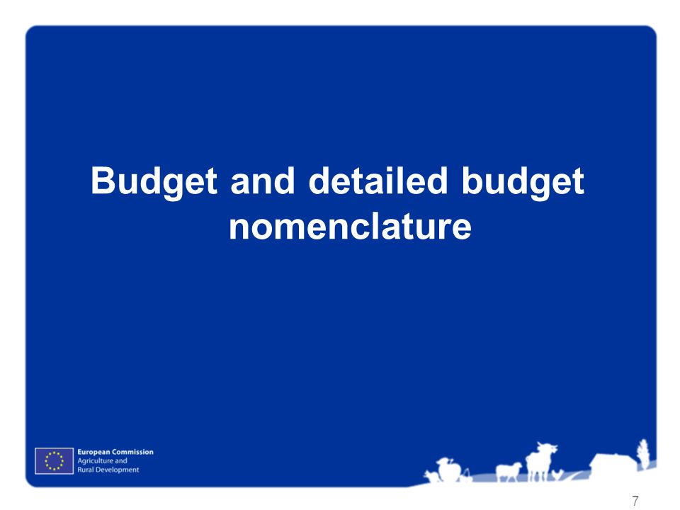 Budget and detailed budget nomenclature