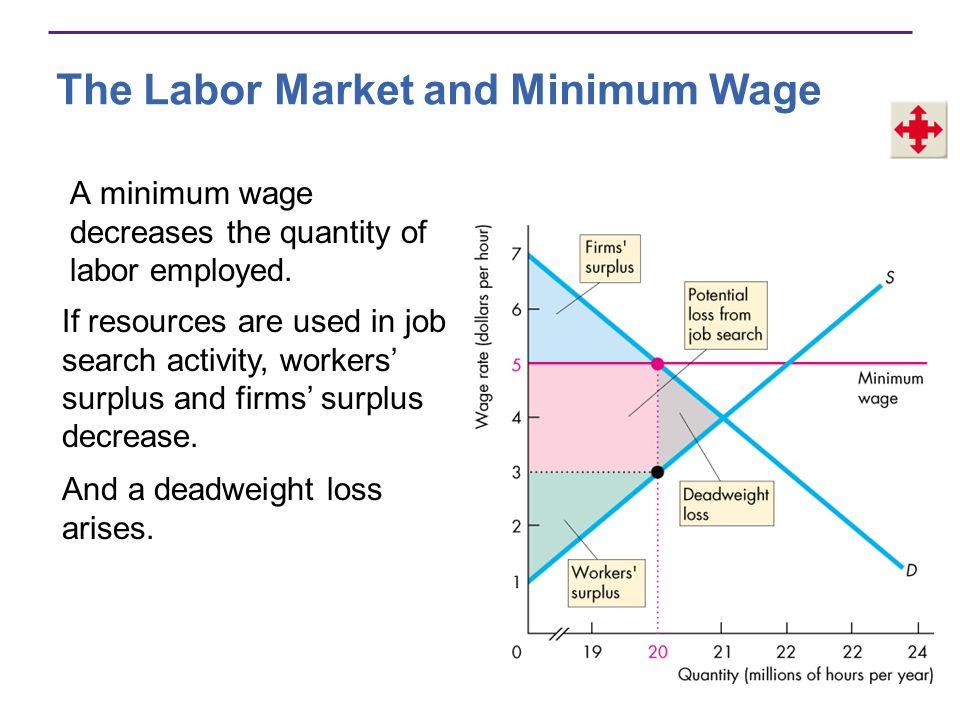 The Labor Market and Minimum Wage