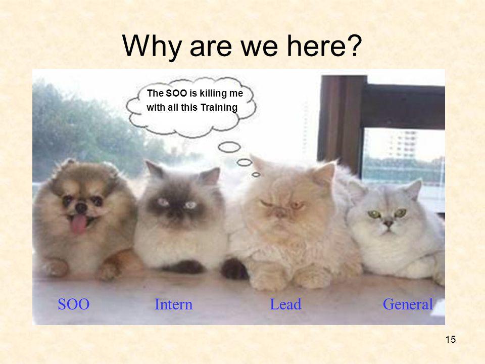 Why are we here SOO Intern Lead General