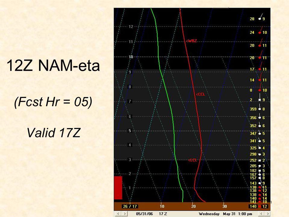 12Z NAM-eta (Fcst Hr = 05) Valid 17Z