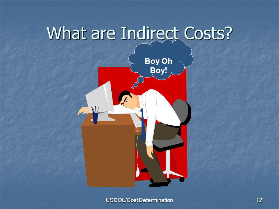 What are Indirect Costs