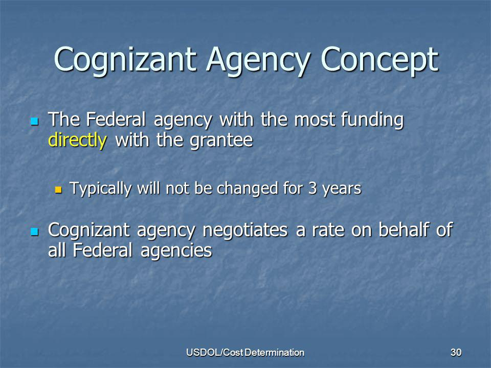 Cognizant Agency Concept