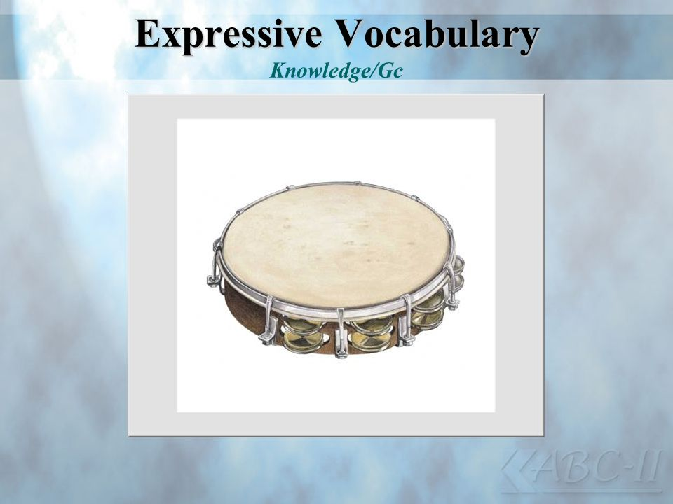 Expressive Vocabulary Knowledge/Gc