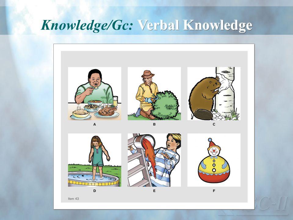 Knowledge/Gc: Verbal Knowledge