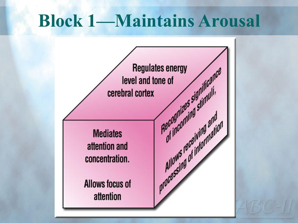 Block 1—Maintains Arousal