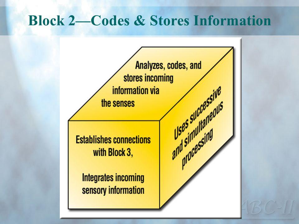 Block 2—Codes & Stores Information