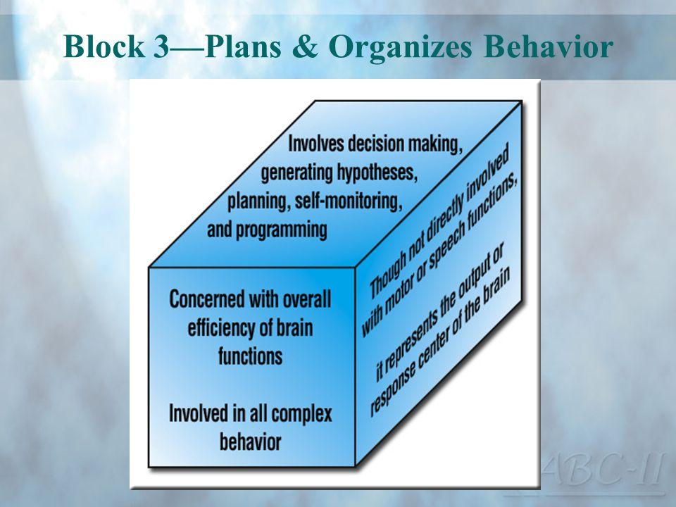 Block 3—Plans & Organizes Behavior