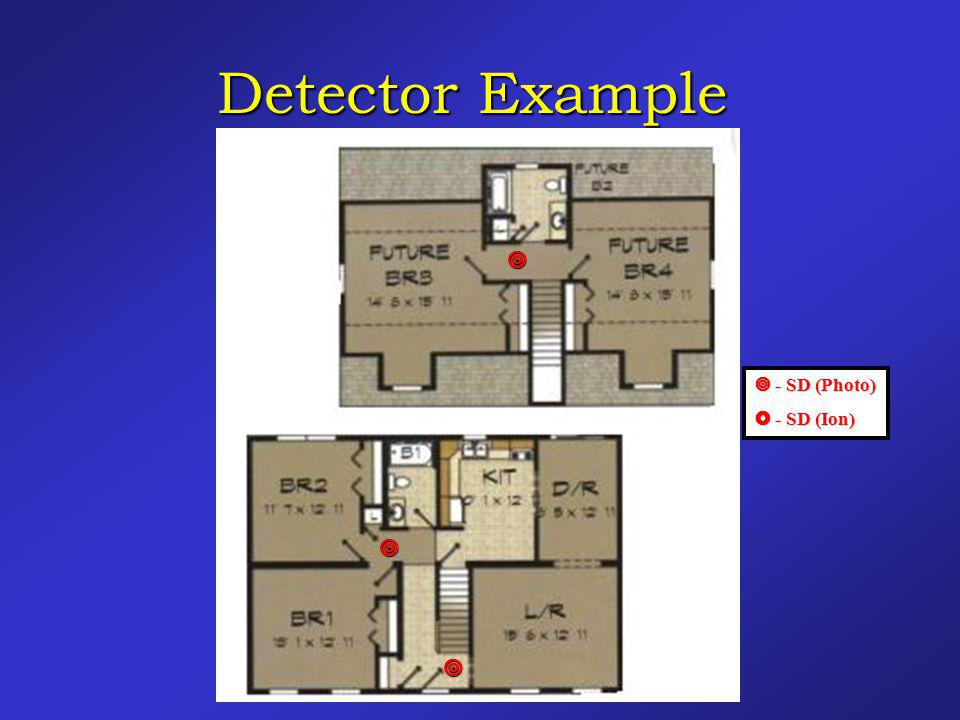 Detector Example   - SD (Photo)  - SD (Ion)   