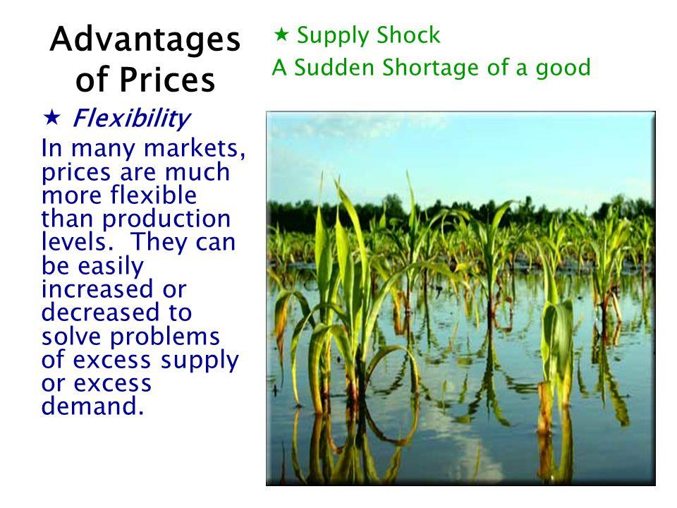 Advantages of Prices Flexibility