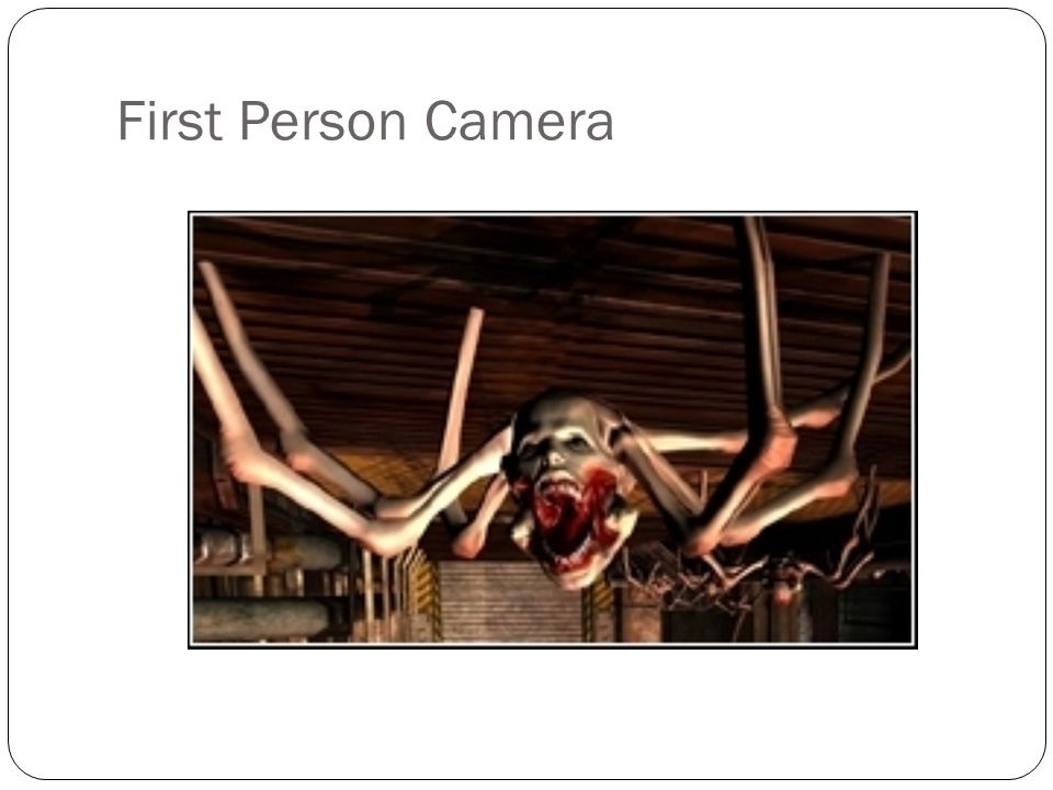 First Person Camera