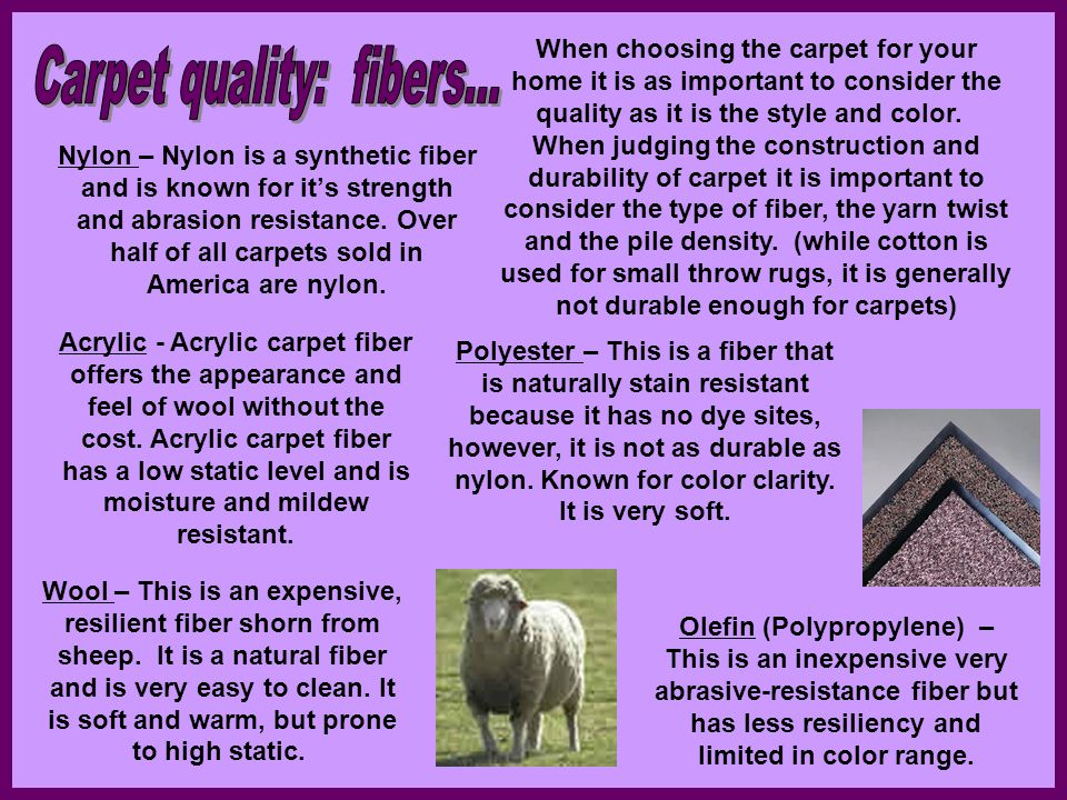 Carpet quality: fibers...