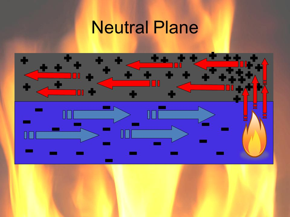 Neutral Plane 81