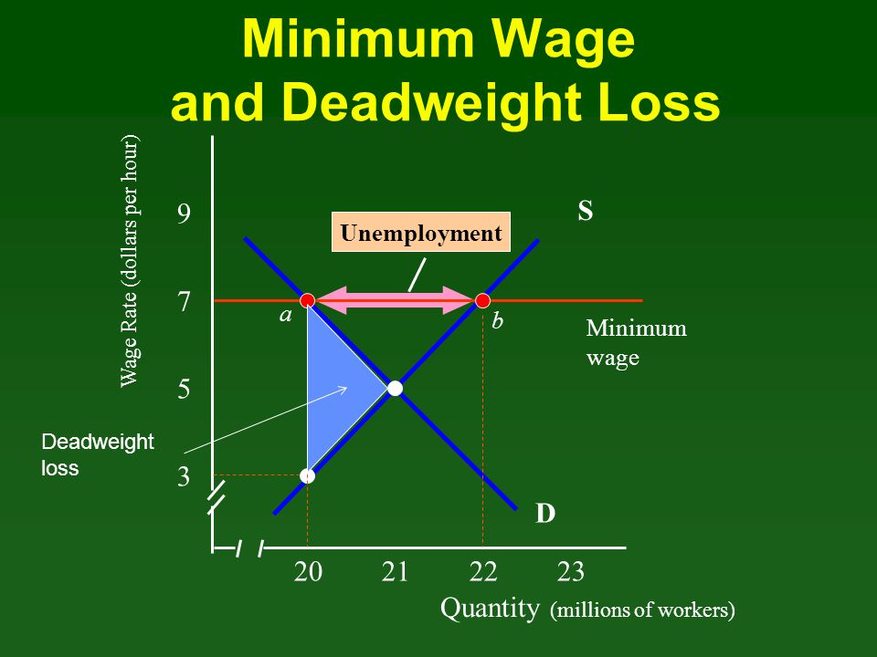 Minimum Wage and Deadweight Loss