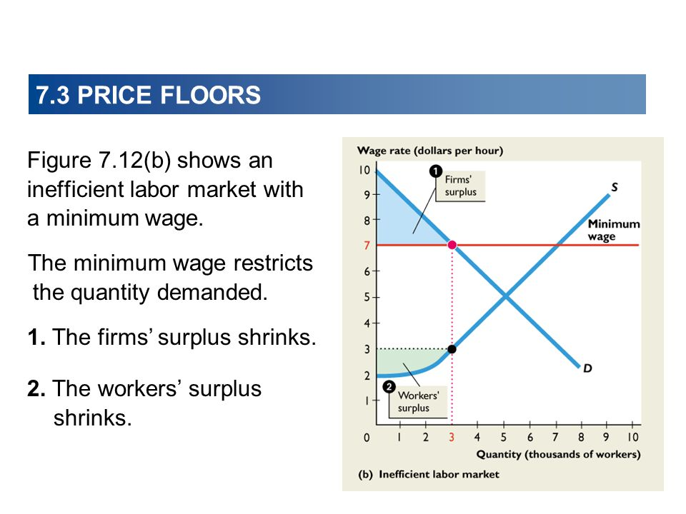 7.3 PRICE FLOORS Figure 7.12(b) shows an inefficient labor market with a minimum wage. The minimum wage restricts the quantity demanded.