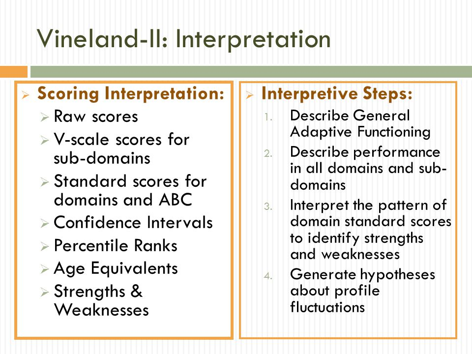 Vineland-II: Interpretation