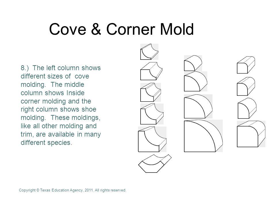 Cove & Corner Mold