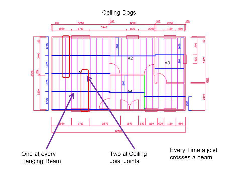 Ceiling Dogs Every Time a joist crosses a beam. One at every Hanging Beam.