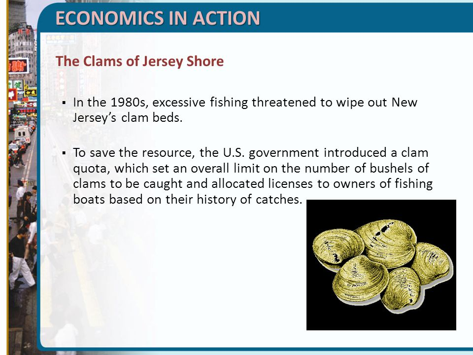 ECONOMICS IN ACTION The Clams of Jersey Shore