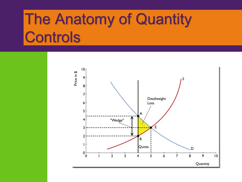The Anatomy of Quantity Controls