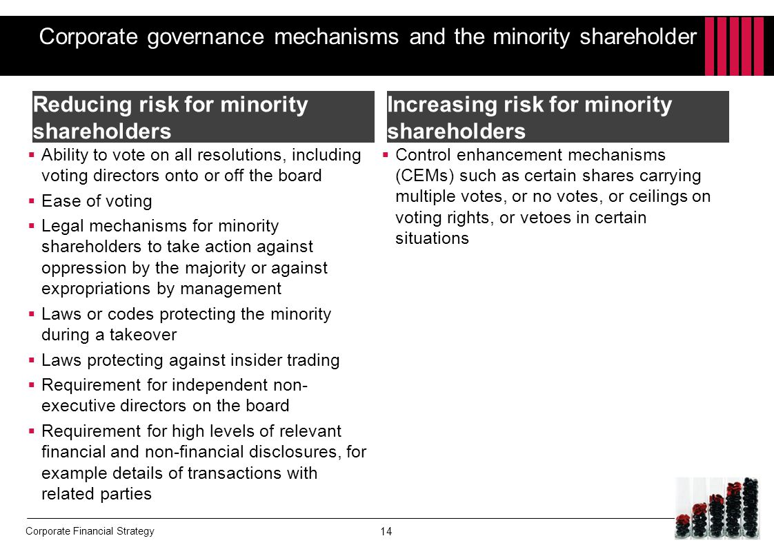 Corporate governance mechanisms and the minority shareholder
