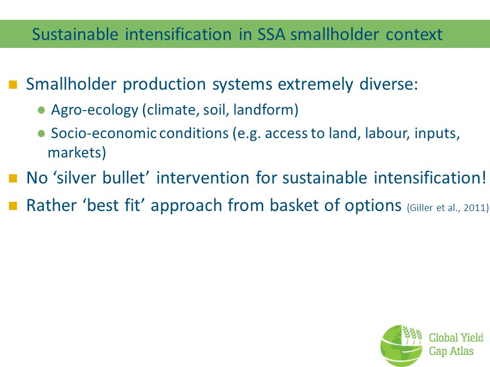 Sustainable intensification in SSA smallholder context