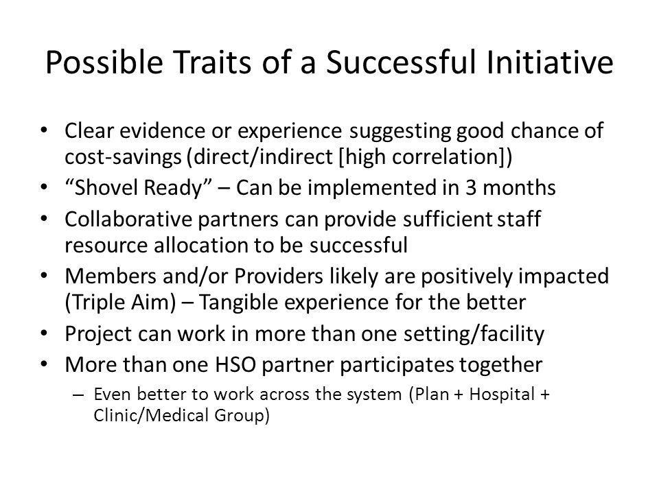 Possible Traits of a Successful Initiative