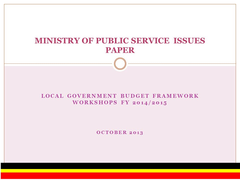 MINISTRY OF PUBLIC SERVICE ISSUES PAPER