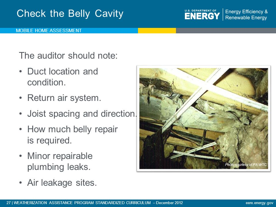 Check the Belly Cavity The auditor should note: