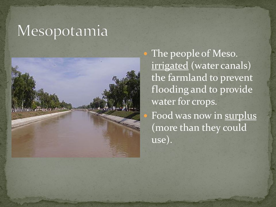 Mesopotamia The people of Meso. irrigated (water canals) the farmland to prevent flooding and to provide water for crops.