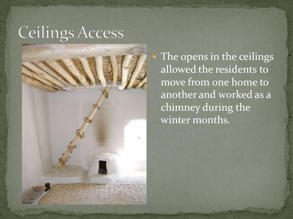 Ceilings Access