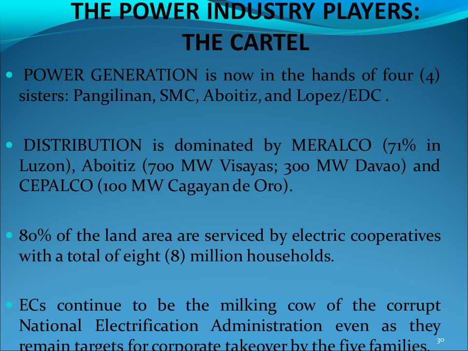 THE POWER INDUSTRY PLAYERS: THE CARTEL