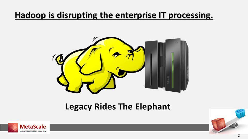 Legacy Rides The Elephant