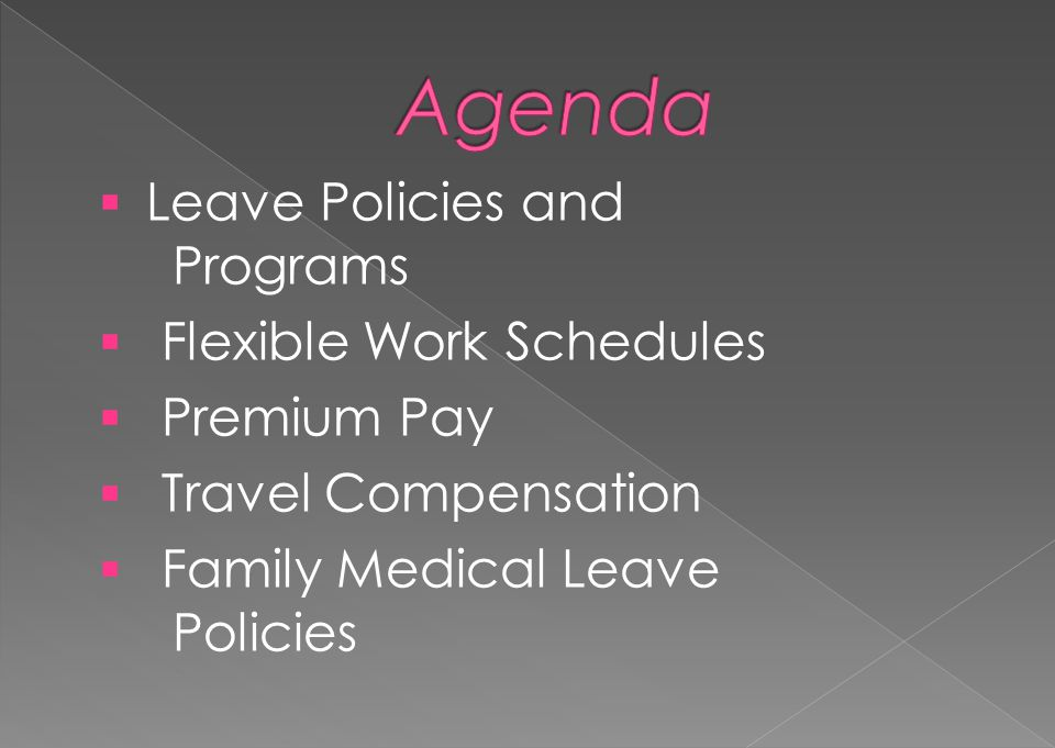 Agenda Leave Policies and Programs Flexible Work Schedules Premium Pay
