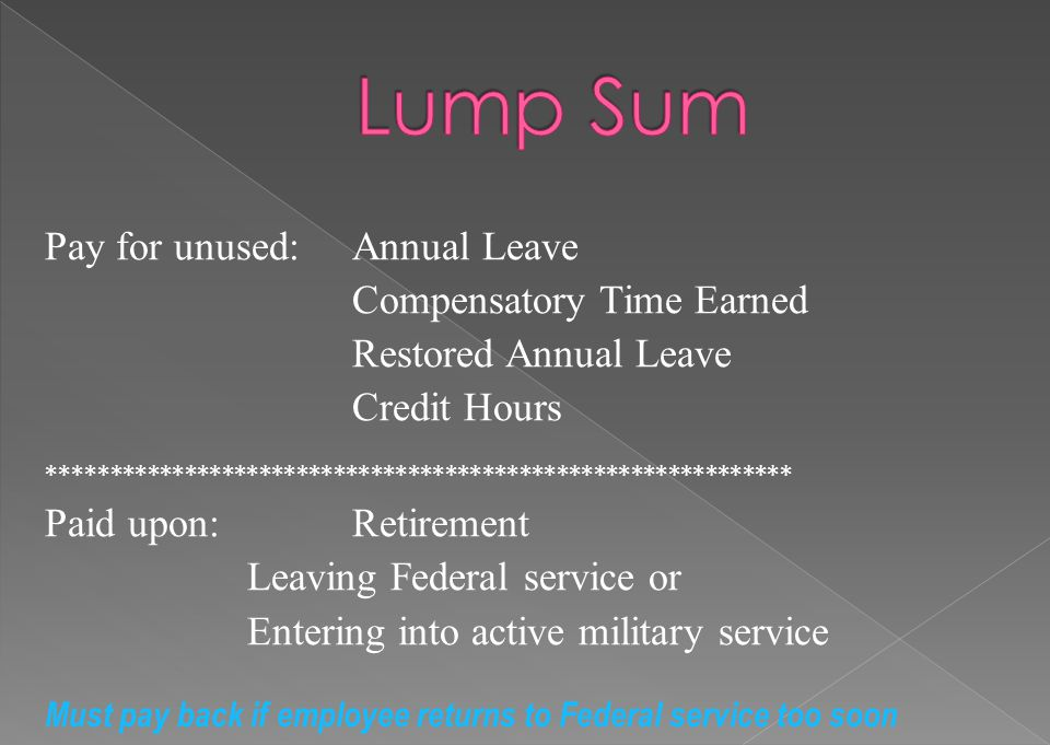 Lump Sum Pay for unused: Annual Leave Compensatory Time Earned