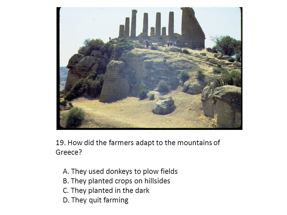 19. How did the farmers adapt to the mountains of Greece
