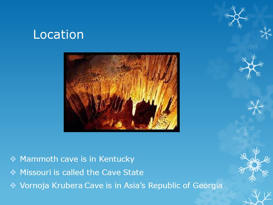 Location Mammoth cave is in Kentucky Missouri is called the Cave State