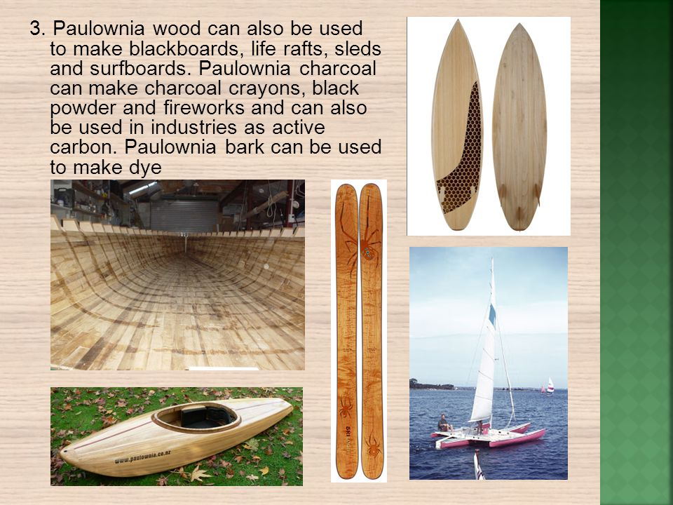 3. Paulownia wood can also be used to make blackboards, life rafts, sleds and surfboards.