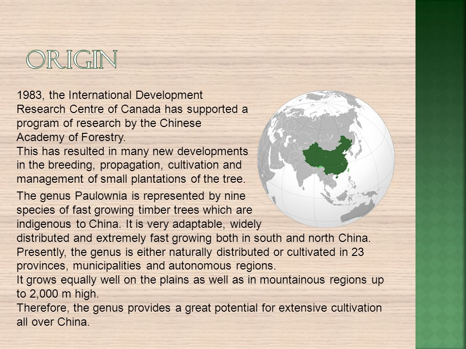 Origin 1983, the International Development Research Centre of Canada has supported a program of research by the Chinese Academy of Forestry.
