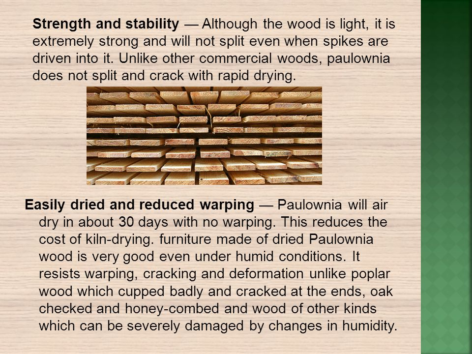 Strength and stability — Although the wood is light, it is extremely strong and will not split even when spikes are driven into it. Unlike other commercial woods, paulownia does not split and crack with rapid drying.