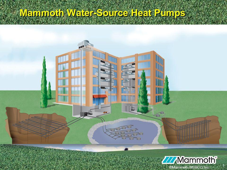 Mammoth Water-Source Heat Pumps
