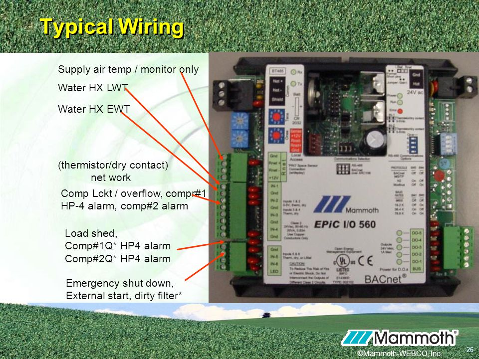 Typical Wiring Supply air temp / monitor only Water HX LWT