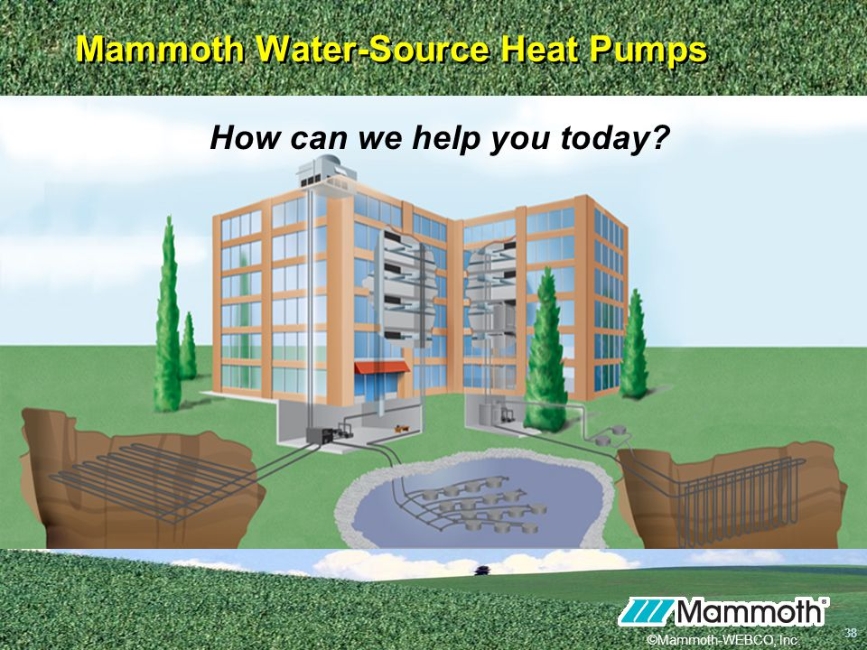Mammoth Water-Source Heat Pumps