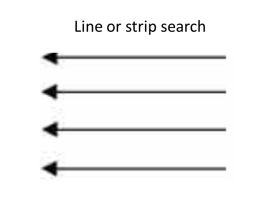 Line or strip search